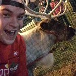 More reindeer!